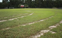 Police searching for football field vandal